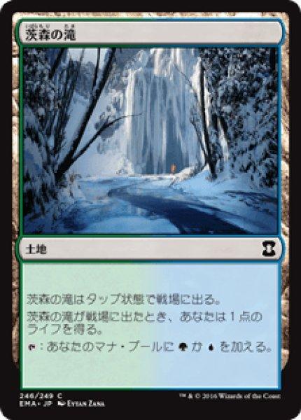 画像1: 【日本語版】《茨森の滝/Thornwood Falls》[EMA] (1)