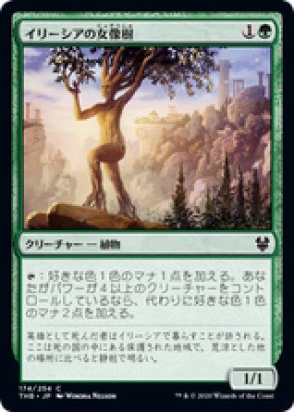 画像1: 【日本語版】《イリーシアの女像樹/Ilysian Caryatid》[THB] (1)